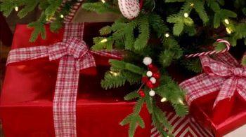 Michaels TV Spot, 'Holidays: 60% Off Trees' - Thumbnail 8