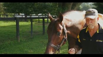 Claiborne Farm TV Spot, 'Bright Future'