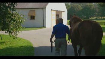 Claiborne Farm TV Spot, 'Bright Future' - Thumbnail 7