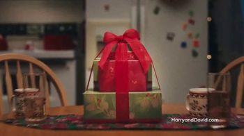 Harry & David TV Spot, 'Holidays: Gourmet Gifts' - Thumbnail 9