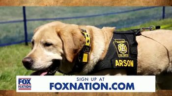 FOX Nation TV Spot, 'Hero Dogs' - Thumbnail 1