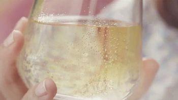 Cupcake Light Hearted Pinot Grigio TV Spot, 'Picnic' - Thumbnail 3