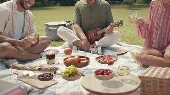 Cupcake Light Hearted Pinot Grigio TV Spot, 'Picnic' - Thumbnail 5