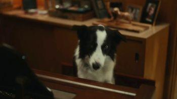 Physicians Mutual TV Spot, 'Best Friend' Featuring John Michael Higgins - Thumbnail 8