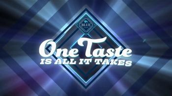 Blue Buffalo Tastefuls TV Spot, 'All About the Flavor' - Thumbnail 2