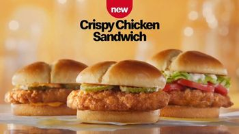 McDonald's Crispy Chicken Sandwich TV Spot, 'Crispy, Juicy, Tender' - Thumbnail 5