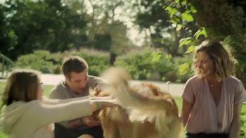 Blue Buffalo TV Spot, 'Natural Ingredients' - Thumbnail 2