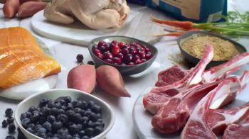 Blue Buffalo TV Spot, 'Natural Ingredients' - Thumbnail 4