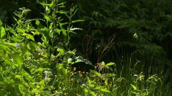 Biltmore Estate TV Spot, 'Biltmore in Bloom: Spring' - Thumbnail 1