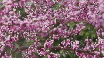Biltmore Estate TV Spot, 'Biltmore in Bloom: Spring' - Thumbnail 7