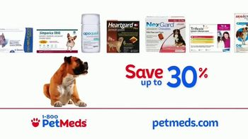 1-800-PetMeds TV Spot, 'Pets Are Family and We Know It' - Thumbnail 7