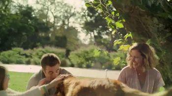 Blue Buffalo TV Spot, 'Promise' - Thumbnail 6