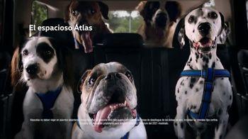 Ofertas Presidents Day de Volkswagen TV Spot, 'Cuando sea grande' [Spanish] [T2] - Thumbnail 2