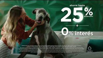 Ashley HomeStore Venta del Fin de Semana del Día de los Presidentes TV Spot, 'Ahorre 25%' [Spanish] - Thumbnail 3