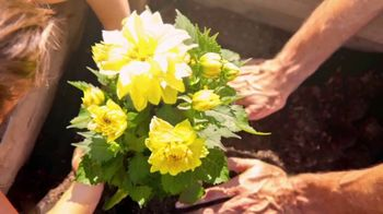 PNC Financial Services TV Spot, 'Celebrate Beauty' - Thumbnail 8