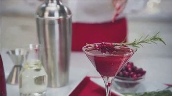 Smirnoff No. 21 Vodka TV Spot, 'Ion Television: Your Home for the Holidays' Featuring Lauren O'Quinn - Thumbnail 3
