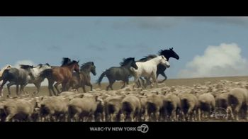 Disney+ TV Spot, 'Black Beauty' Song by Fleurie - Thumbnail 1