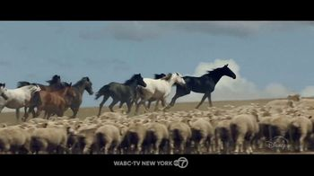 Disney+ TV Spot, 'Black Beauty' Song by Fleurie - Thumbnail 2