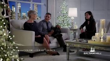 Balsam Hill Cyber Week Savings TV Spot, 'This Tree: Up to 50% Off'