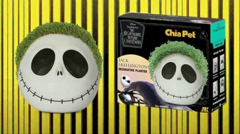 Chia Pet TV Spot, 'Disney Styles: The Child, Jack Skellington, Groot and Golden Girls' - Thumbnail 7