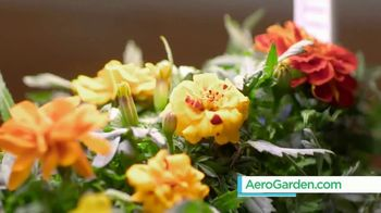 AeroGarden TV Spot, 'Plant to Plate' - Thumbnail 8
