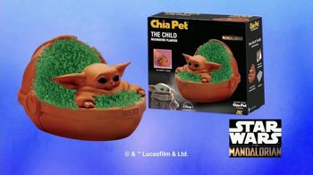 Chia Pet TV Spot, 'Star Wars, Jack Skellington, Golden Girls'