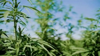 Vantage Hemp TV Spot, 'Vantage Hemp at a Glance' - Thumbnail 2