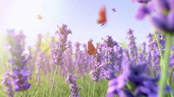 Air Wick Scented Oils TV Spot, 'Best Smelling Scents'