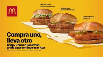 McDonald's Crispy Chicken Sandwich TV Spot, 'Crujiente, jugoso, tierno: compra uno y llévate otro' [Spanish] - Thumbnail 4