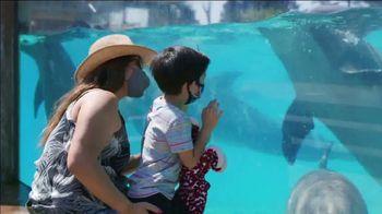 SeaWorld TV Spot, 'Seven Seas Food Festival: 20% Off' - Thumbnail 2