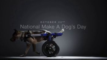 Subaru TV Spot, 'National Make a Dog's Day: The Underdogs: Short End of the Stick' [T1] - Thumbnail 10