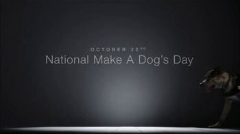Subaru TV Spot, 'National Make a Dog's Day: The Underdogs: Short End of the Stick' [T1] - Thumbnail 9