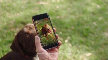 Consumer Cellular TV Spot, 'Dog Park: Talk, Text, Data $20+ a Month' - Thumbnail 1