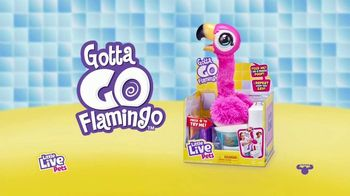 Gotta Go Flamingo TV Spot, 'Uh-oh' - Thumbnail 10