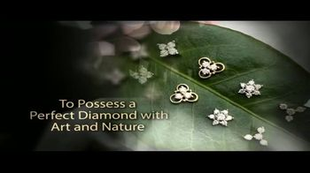 Bhindi Jewelers TV Spot, 'To Possess a Perfect Diamond With Art and Nature' - Thumbnail 4