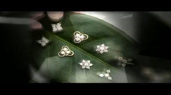 Bhindi Jewelers TV Spot, 'To Possess a Perfect Diamond With Art and Nature' - Thumbnail 7