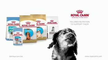 Royal Canin TV Spot, 'Health Now and Always' - Thumbnail 10