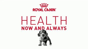 Royal Canin TV Spot, 'Health Now and Always' - Thumbnail 2