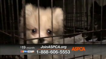 ASPCA TV Spot, 'Every Day in America' Song by Willie Nelson - Thumbnail 8