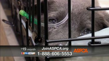 ASPCA TV Spot, 'Every Day in America' Song by Willie Nelson - Thumbnail 5