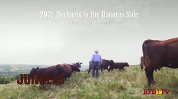 Jungels Shorthorn Farm TV Spot, '2021 Durhams in the Dakotas Sale' - Thumbnail 2
