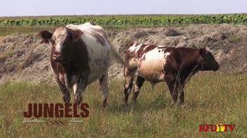 Jungels Shorthorn Farm TV Spot, '2021 Durhams in the Dakotas Sale' - Thumbnail 4