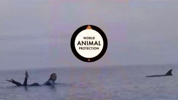 World Animal Protection TV Spot, 'Not Their Job' Featuring Tia Blanco - Thumbnail 10