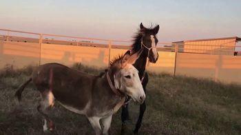 Justin McKee TV Spot, 'Donkey Trust' - Thumbnail 7