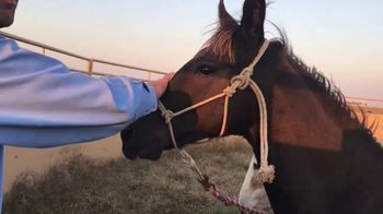 Justin McKee TV Spot, 'Donkey Trust' - Thumbnail 8