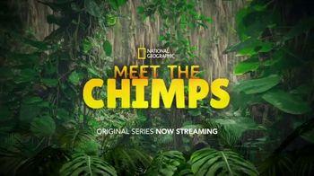 Disney+ TV Spot, 'Meet the Chimps' - Thumbnail 9