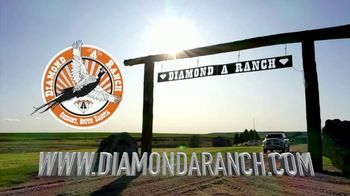 Diamond A Ranch TV Spot, 'Pheasant Hunting' - Thumbnail 7