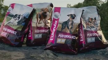 Eukanuba Premium Performance TV Spot, 'Unleash the Potential'