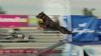 Eukanuba Premium Performance TV Spot, 'Unleash the Potential' - Thumbnail 4