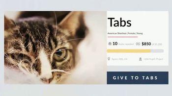 Cuddly TV Spot, 'Tabs the Kitten' - Thumbnail 9